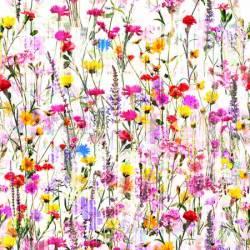Hoffman Mystic Meadow Digitaldruck Blumenwiese bunt
