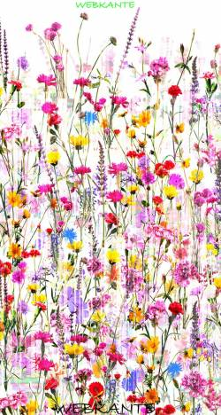 Hoffman Mystic Meadow Digitaldruck Blumenwiese bunt RÜCKSEITENSTOFF überbreit