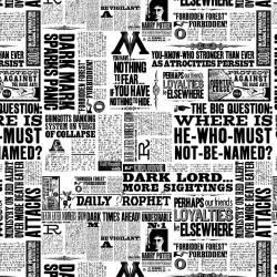 Camelot White Newsprint Harry Potter Zeitungsdruck schwarz weiss