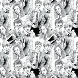 Camelot White Line Art Harry Potter - Ron - Hermione