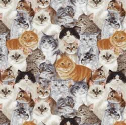 David Textiles Multi Allover Cats Katzen bunt