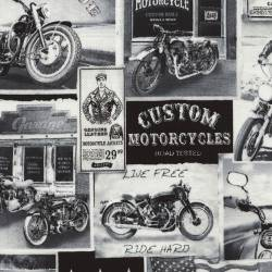 Timeless Treasures Biker Lane News